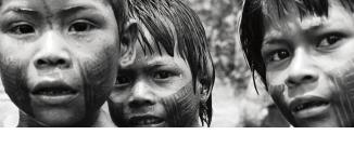 Ir al evento: La luz de la selva amazónica en Casa de América