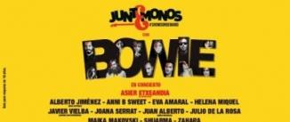 Ir al evento: Juntémonos con Bowie, concierto homenaje