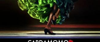Ir al evento: TABLAO CARDAMOMO