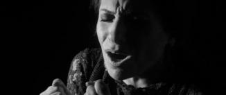 Ir al evento: Suma Flamenca 2014: DESDE EL ALMA…HASTA LA BOCA