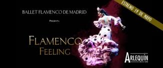 Ir al evento: FLAMENCO FEELING