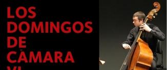 Ir al evento: LOS DOMINGOS DE CÁMARA VI