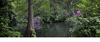Ir al evento: Tiegarten. Un jardín romántico alemán